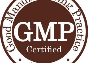 GMP-300X3001